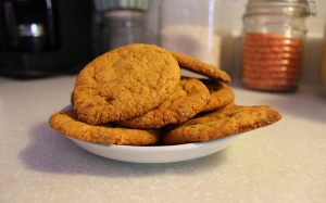 biscuit-5