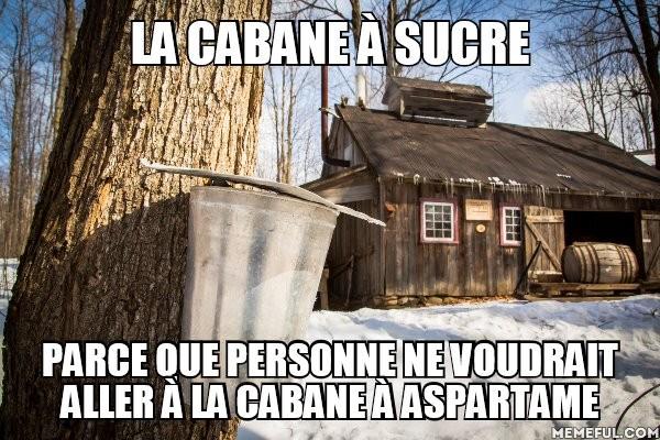 cabane.jpg