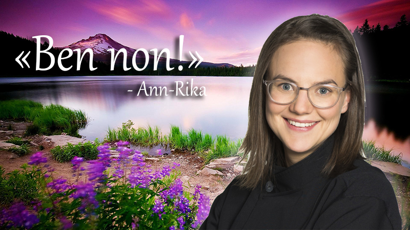 inspiration-Ann-Rika.jpg